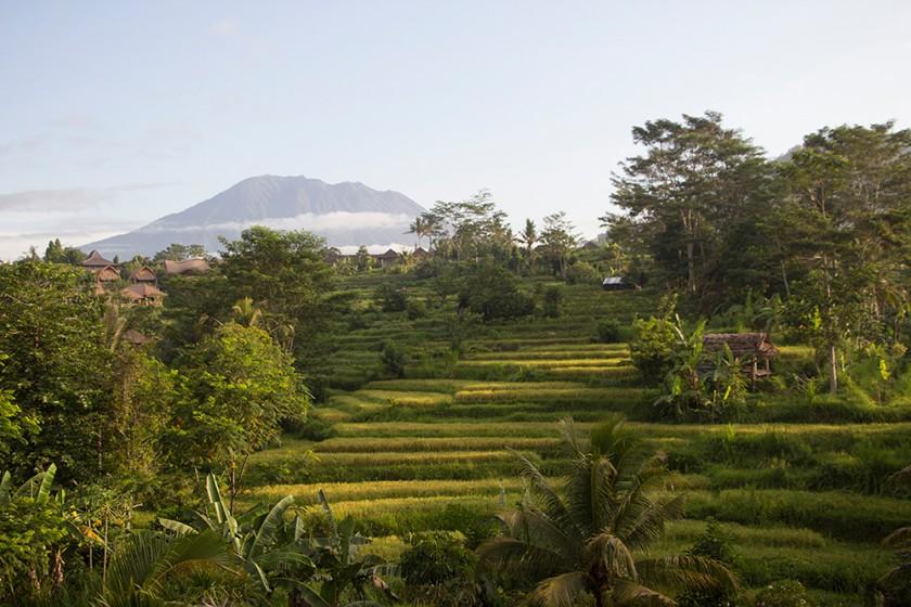 Bali mit Baby – Tipps 1