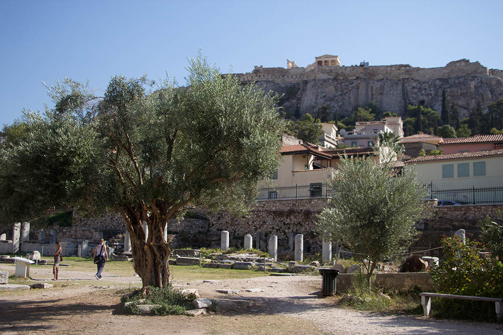 akropolis-reisebericht-2