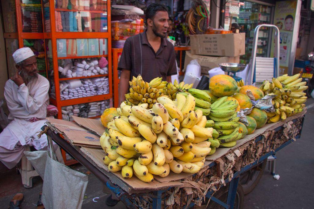 Colombo Reisebericht 16