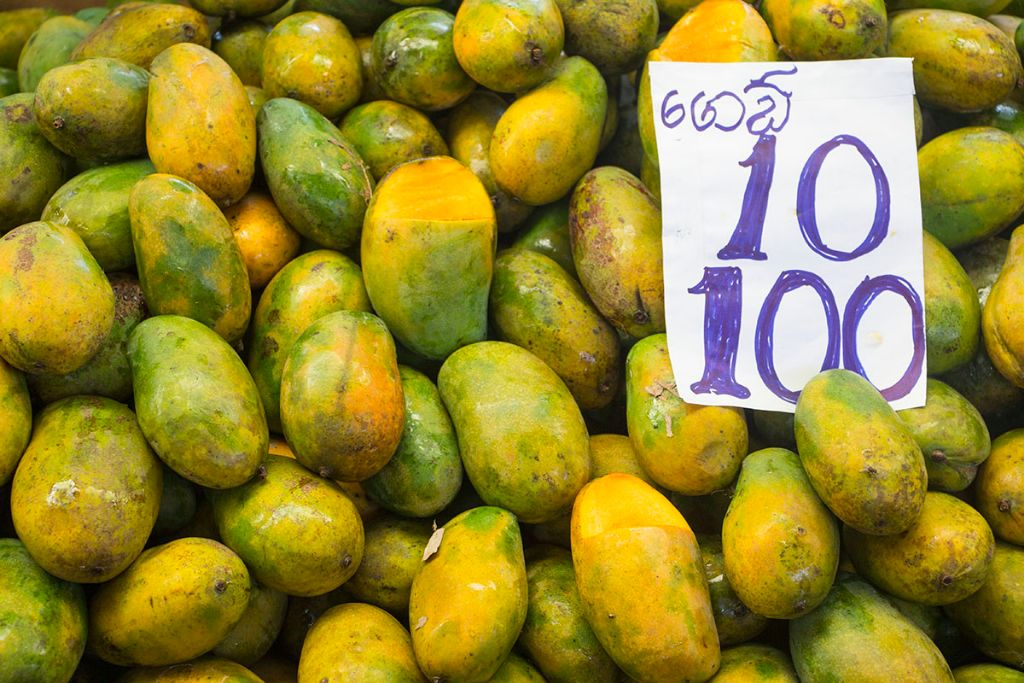 Colombo Reisebericht 2