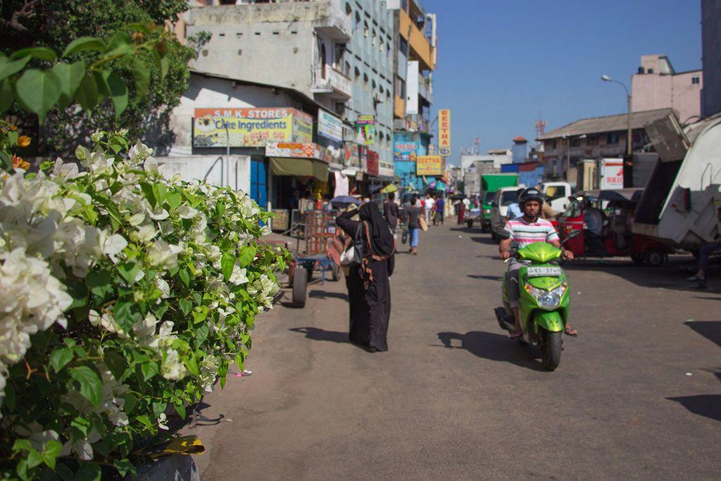 Colombo Reisebericht 21