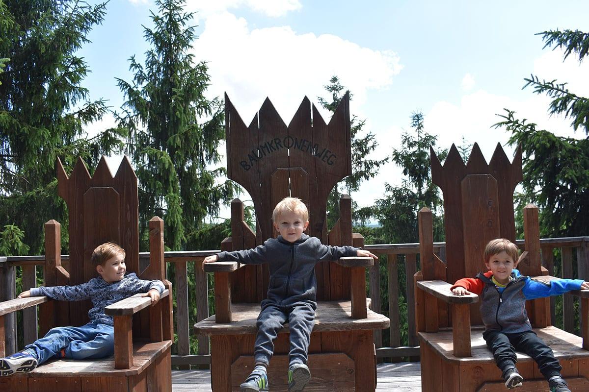 Oberösterreich mit Kindern Ausflufsziele Baumkronenweg