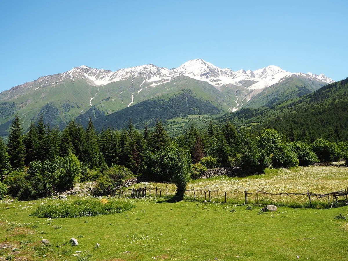 Georgien Urlaub: Tipps & Highlights für eine faszinierende Rundreise – Mestia im Großen Kaukausus