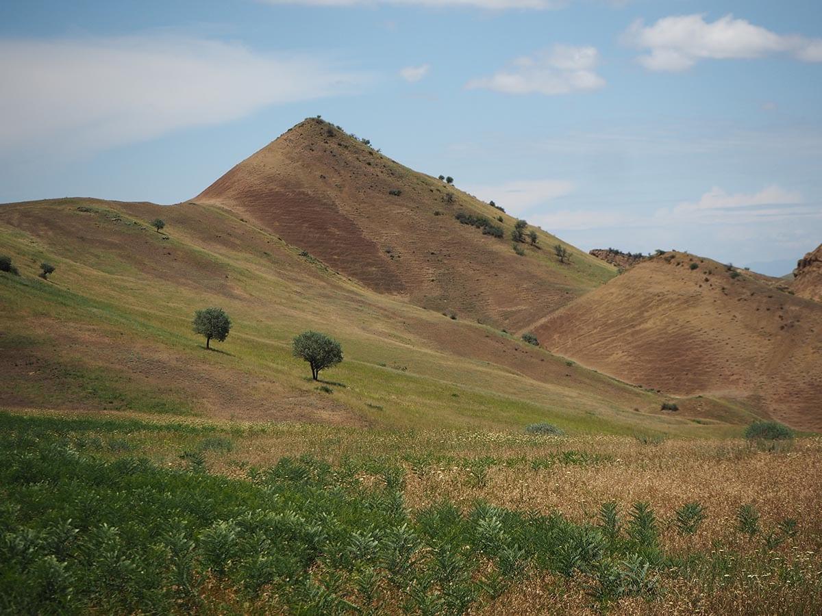 Georgien Urlaub: Tipps & Highlights für eine faszinierende Rundreise – auf dem Weg zum Kloster Dawit Garedscha