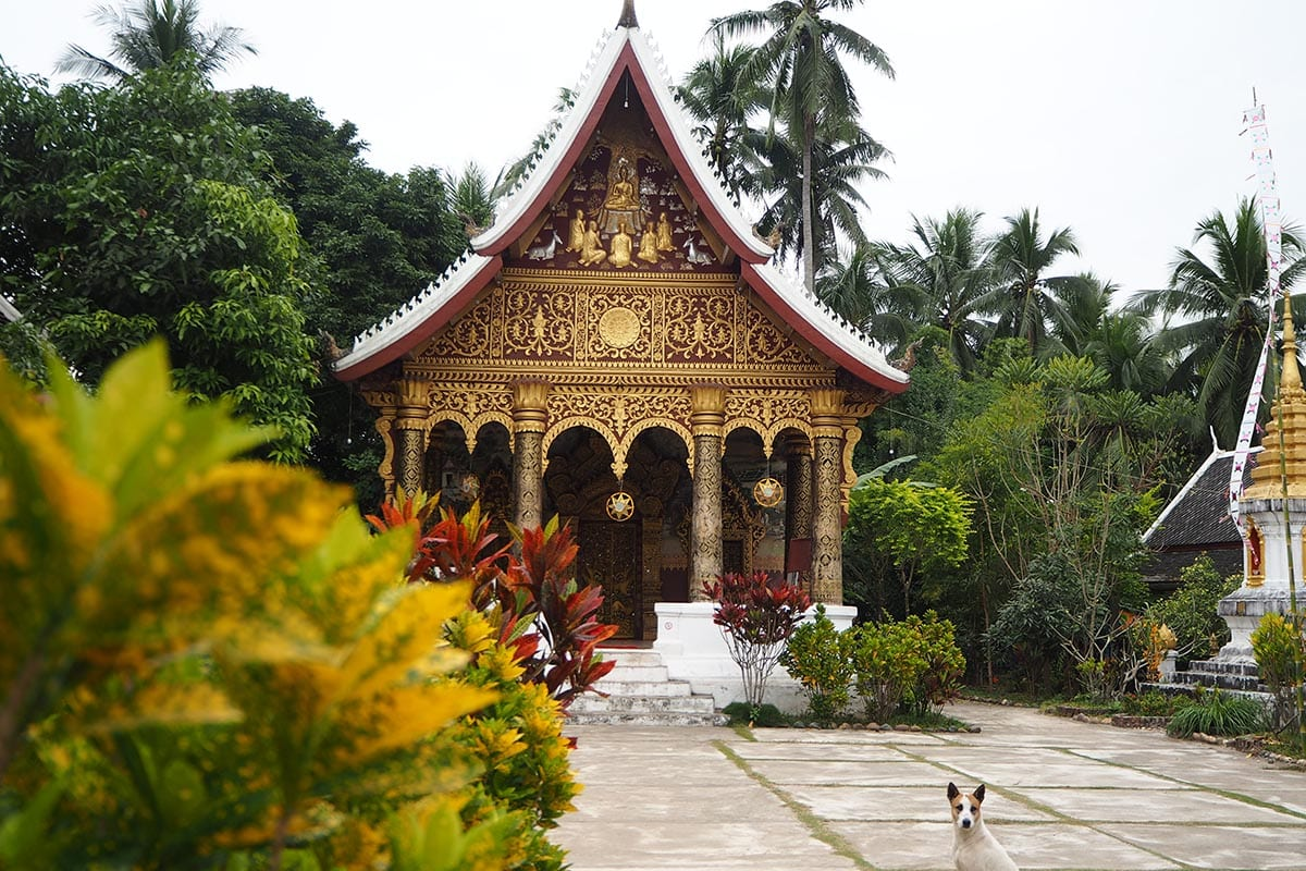 Individuelle Laos Reisen – Tempel in Luang Prabang
