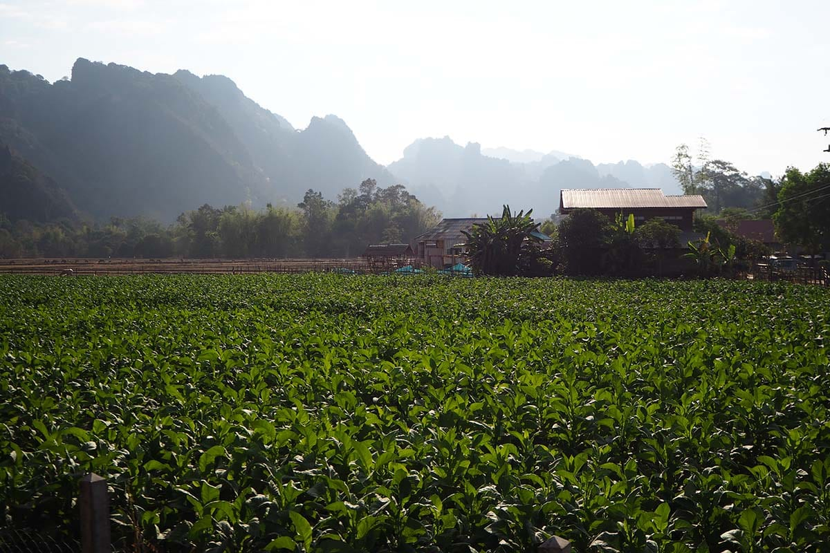 Individuelle Laos Reisen – Landschaft bei der Kong Lor Cave in Zentrallaos