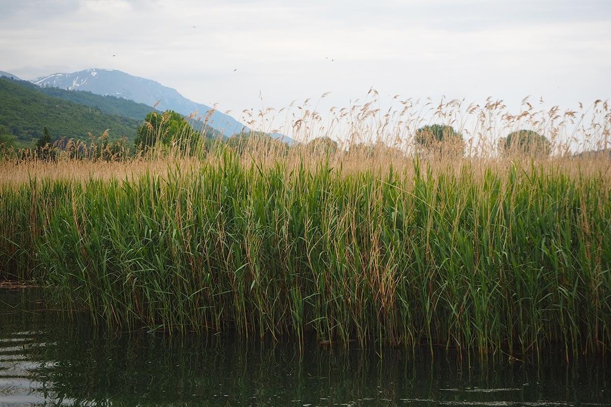 Mazedonien Urlaub Reisetipps Ohridsee