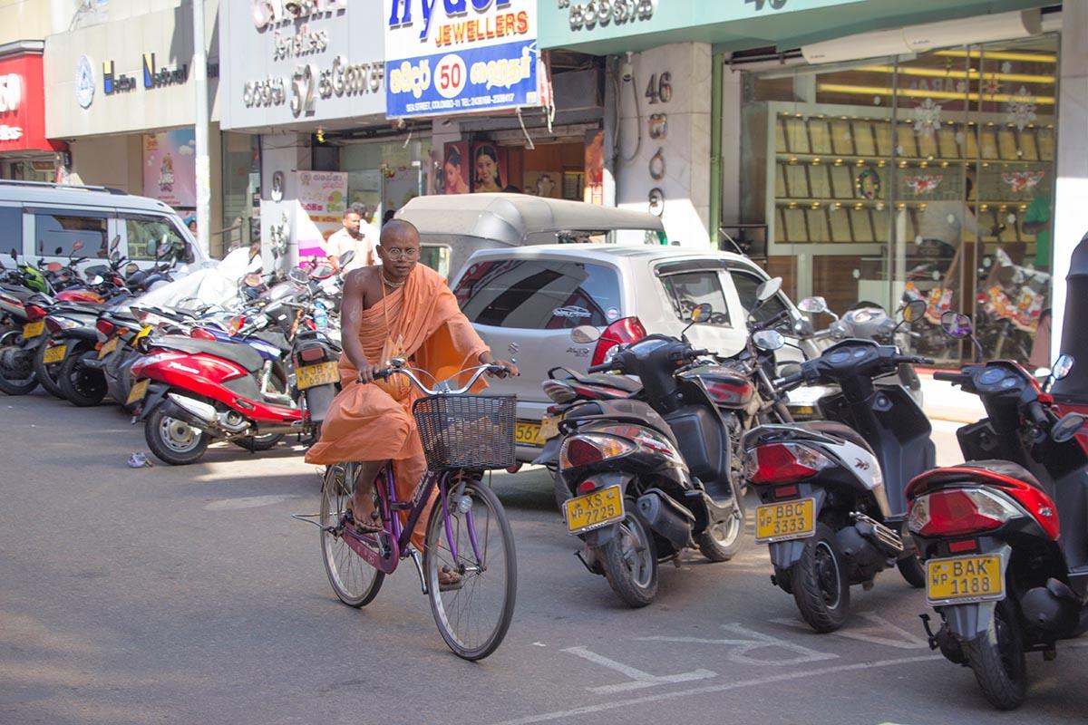 Fernreisen mit Kindern wohin? Beliebte Urlaubsziele für Familien – Sri Lanka, Colombo
