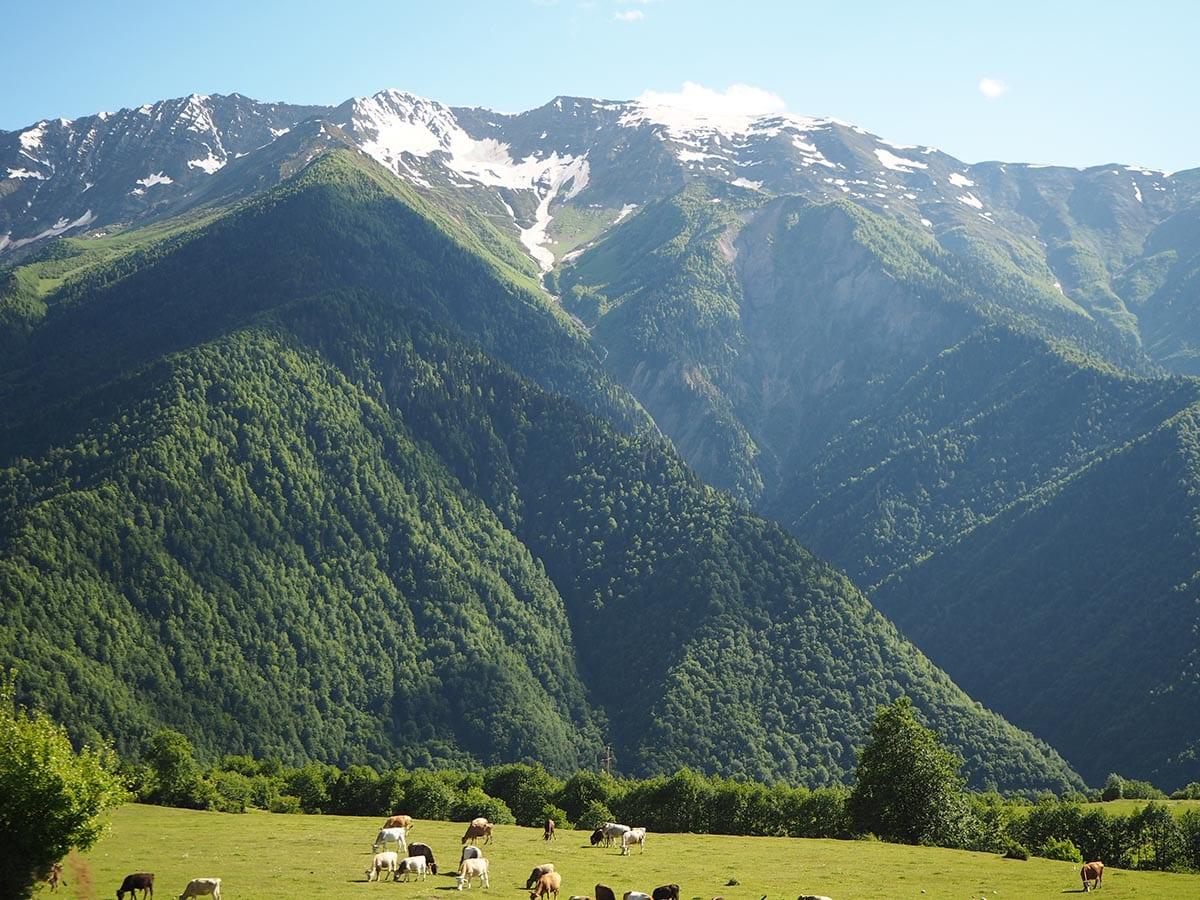 Außergewöhnliche Reisetrends 2020 mit Kindern – Georgien Großer Kaukasus bei Mestia