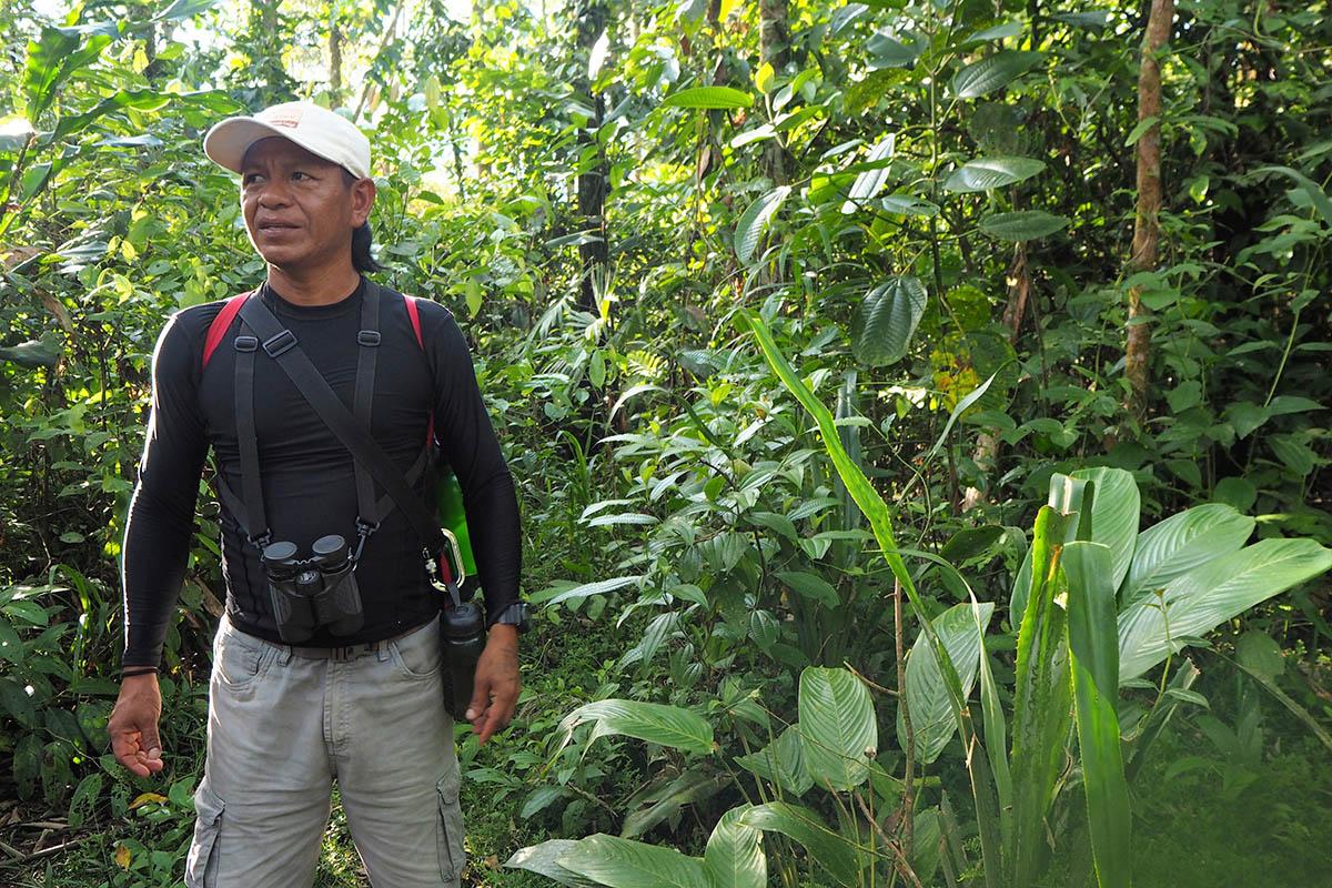 Unser Guide auf einer Regenwald-Tour in Ecuador