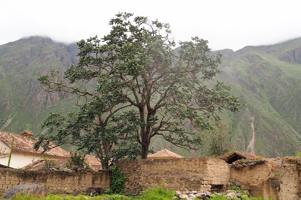 Inka-Stätte im Heiligen Tal
