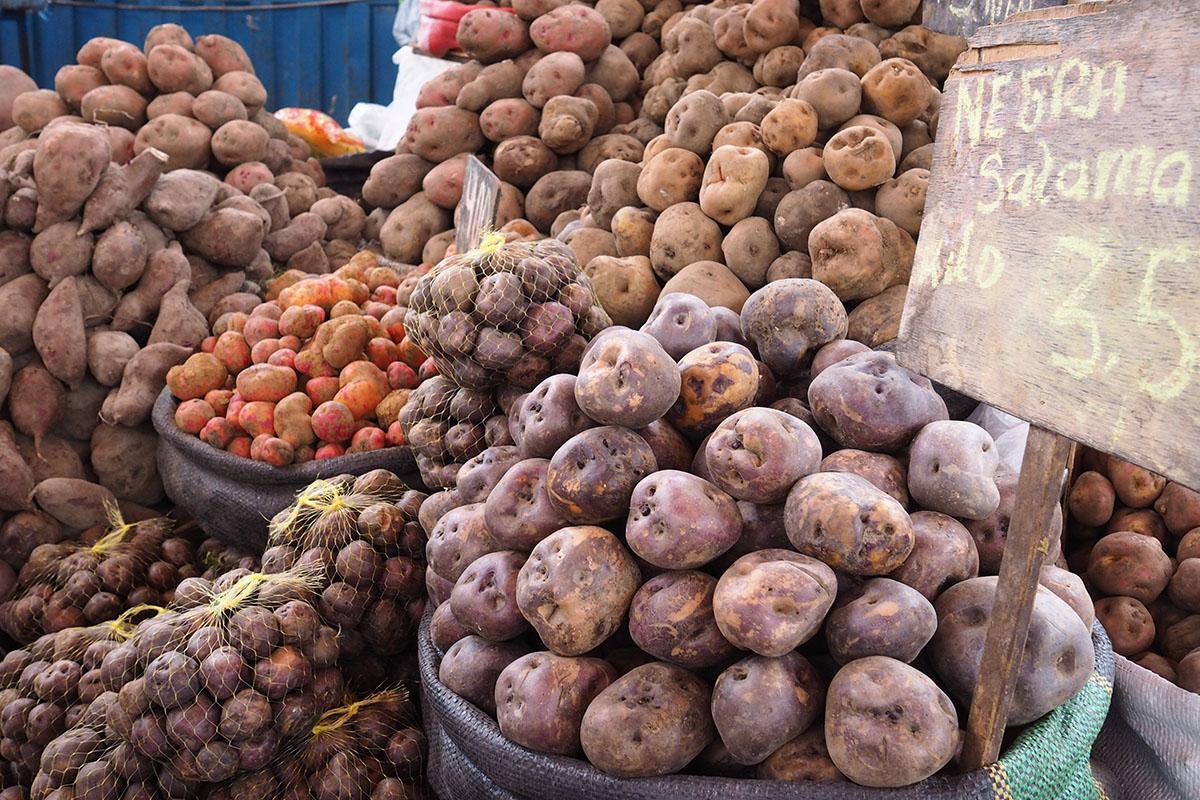 Peruanisch kochen – verschiedene Kartoffelsorten auf einem lokalen Markt