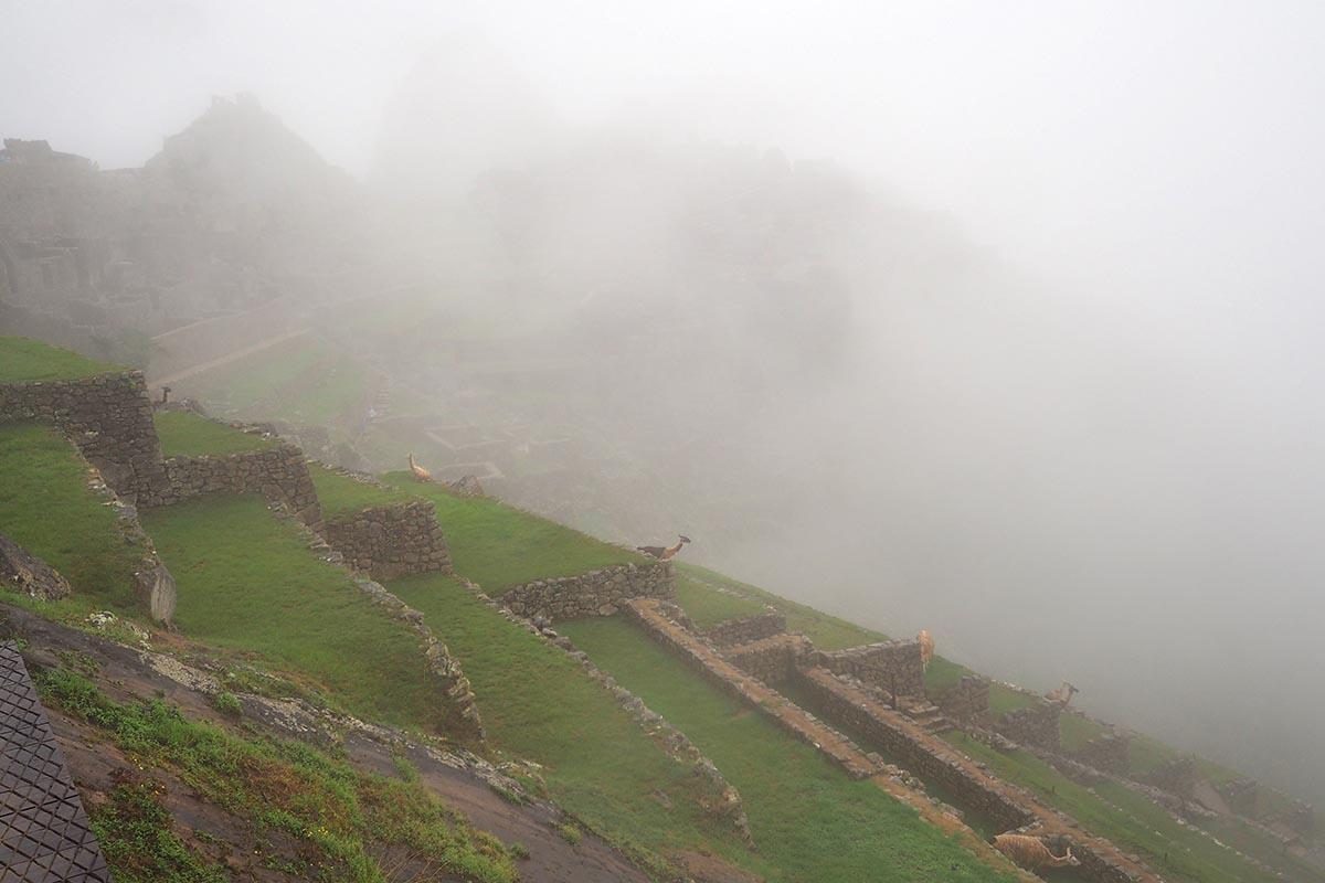 Tiefhängende Wolken in Machu Picchu während der Regenzeit