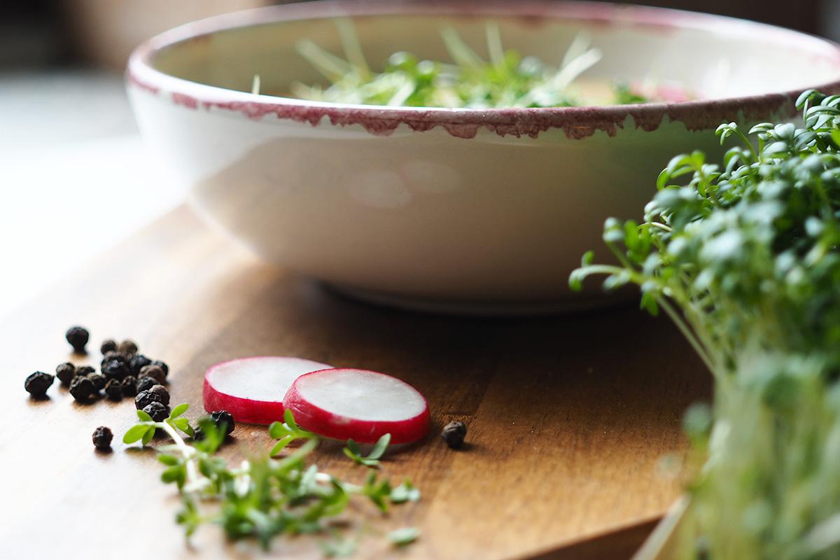 Radieschen und Kresse für ein sommerliches Suppenrezept
